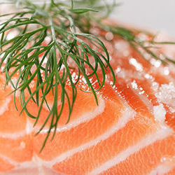 Fresh Atlantic Salmon  Whole and Fillets